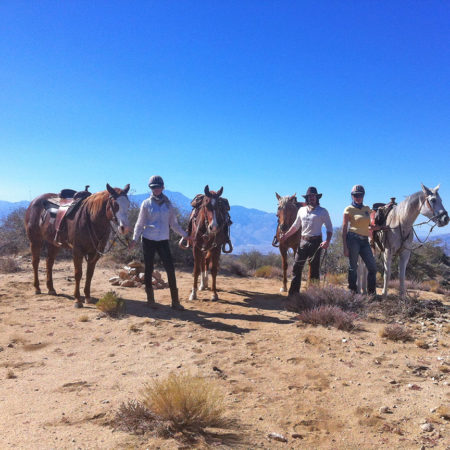 Knob Hill Horseback Riding in Joshua Tree. Killer road trip!